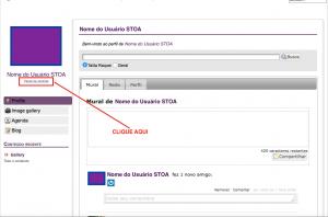 Acesse http://social.stoa.usp.br